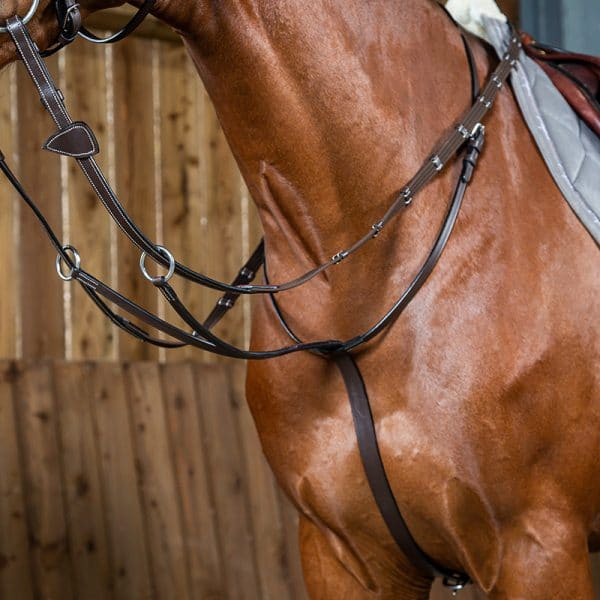 Dyon working martingale
